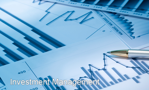 Financial Investment Administration Mistakes That Will Expense You $1m